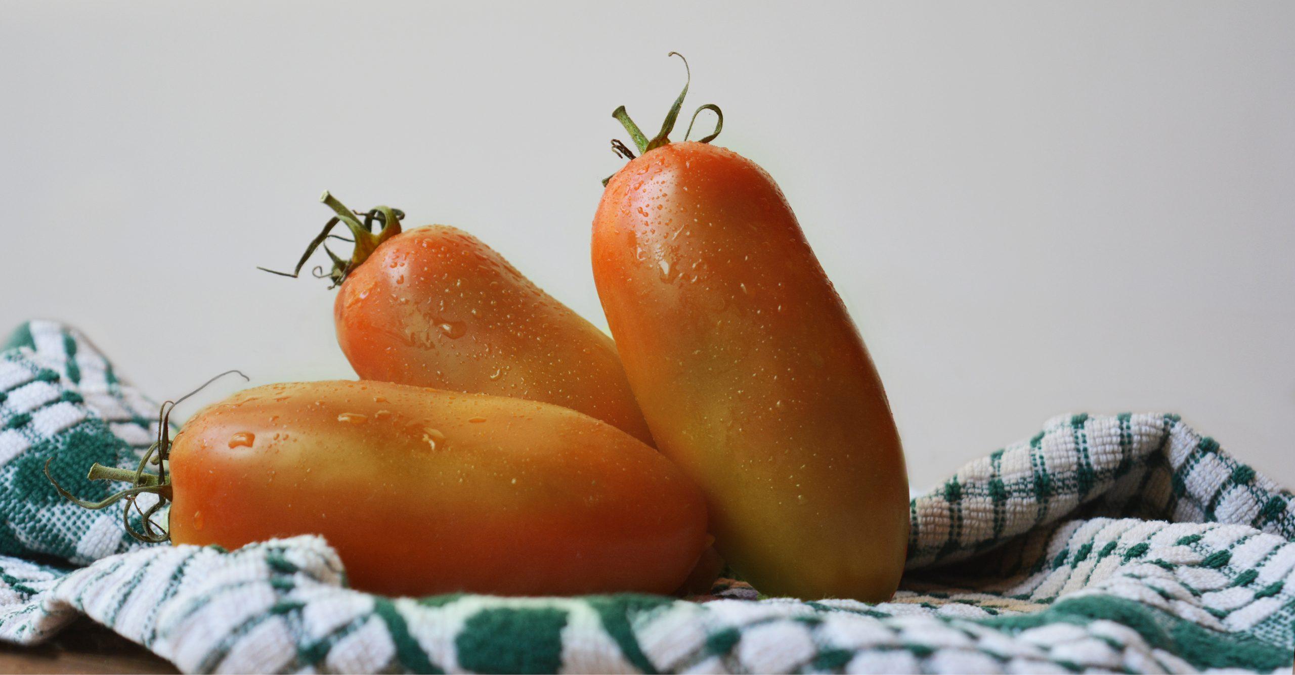 Curiosità e benefici del pomodoro oblungo